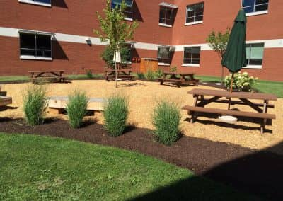 Eisenhower School Butterfly Garden